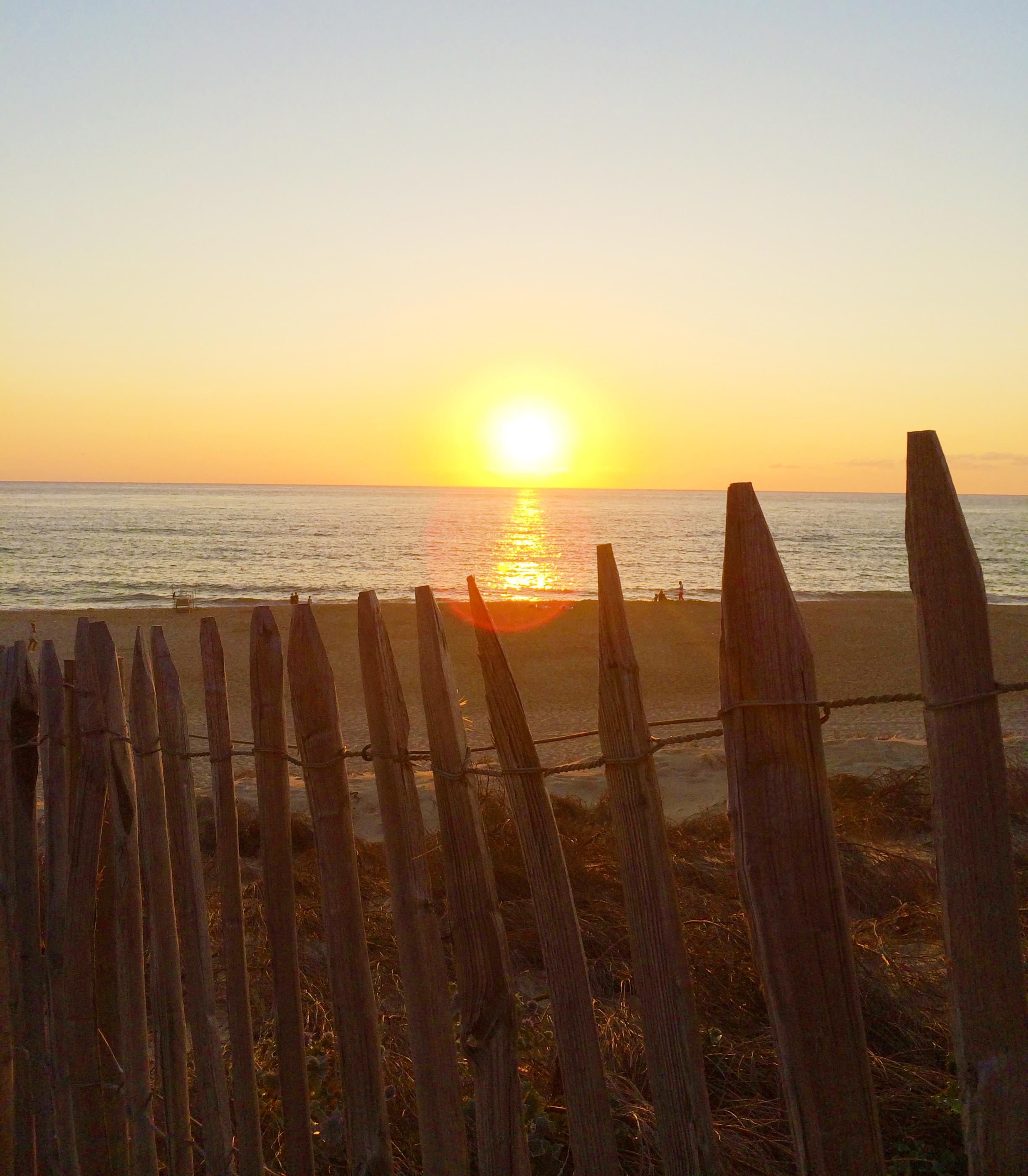 Vitaliteit Coaching zonsondergang